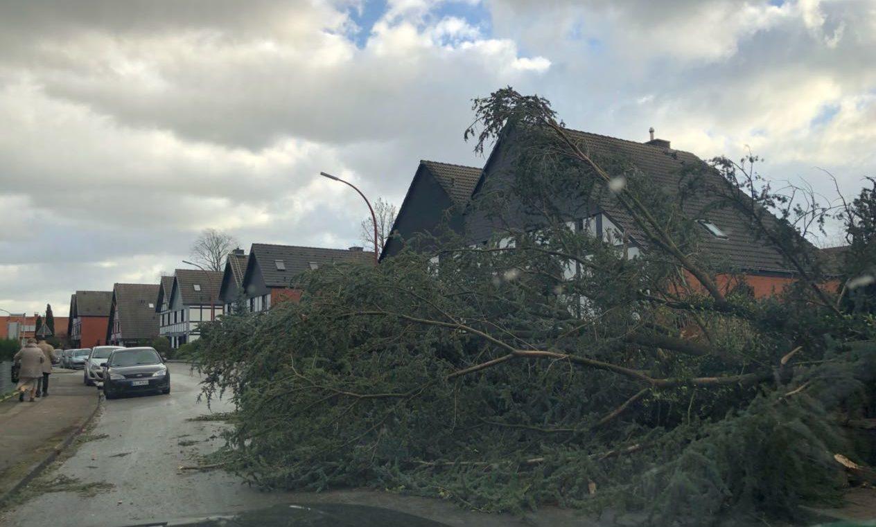 Orkan Sabine: Viele Schulen in NRW am Montag geschlossen