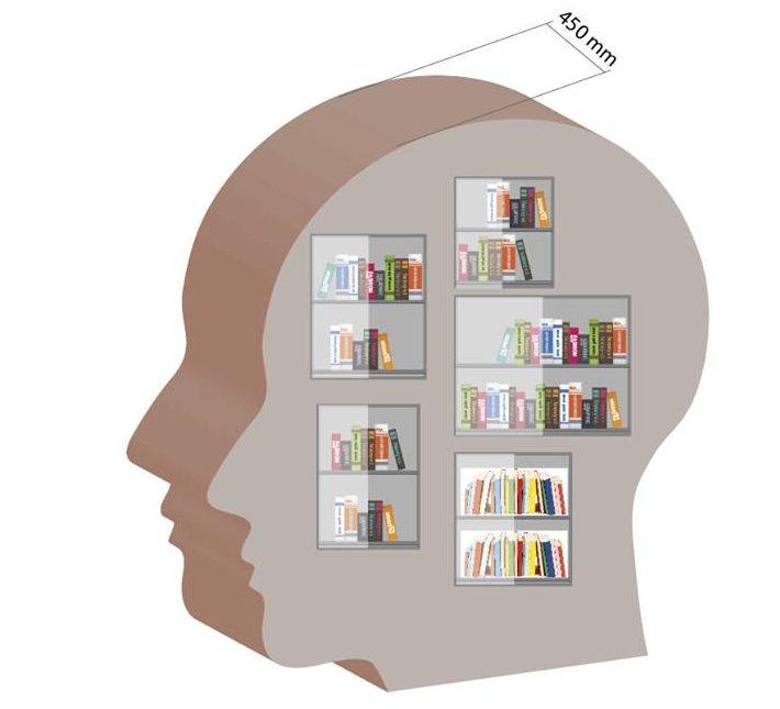 Politik sagt: Bücherschrank kann kommen!