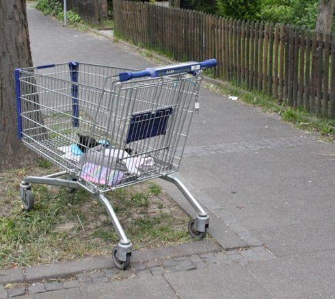 Tote Katze in Einkaufswagen auf Gehweg abgestellt