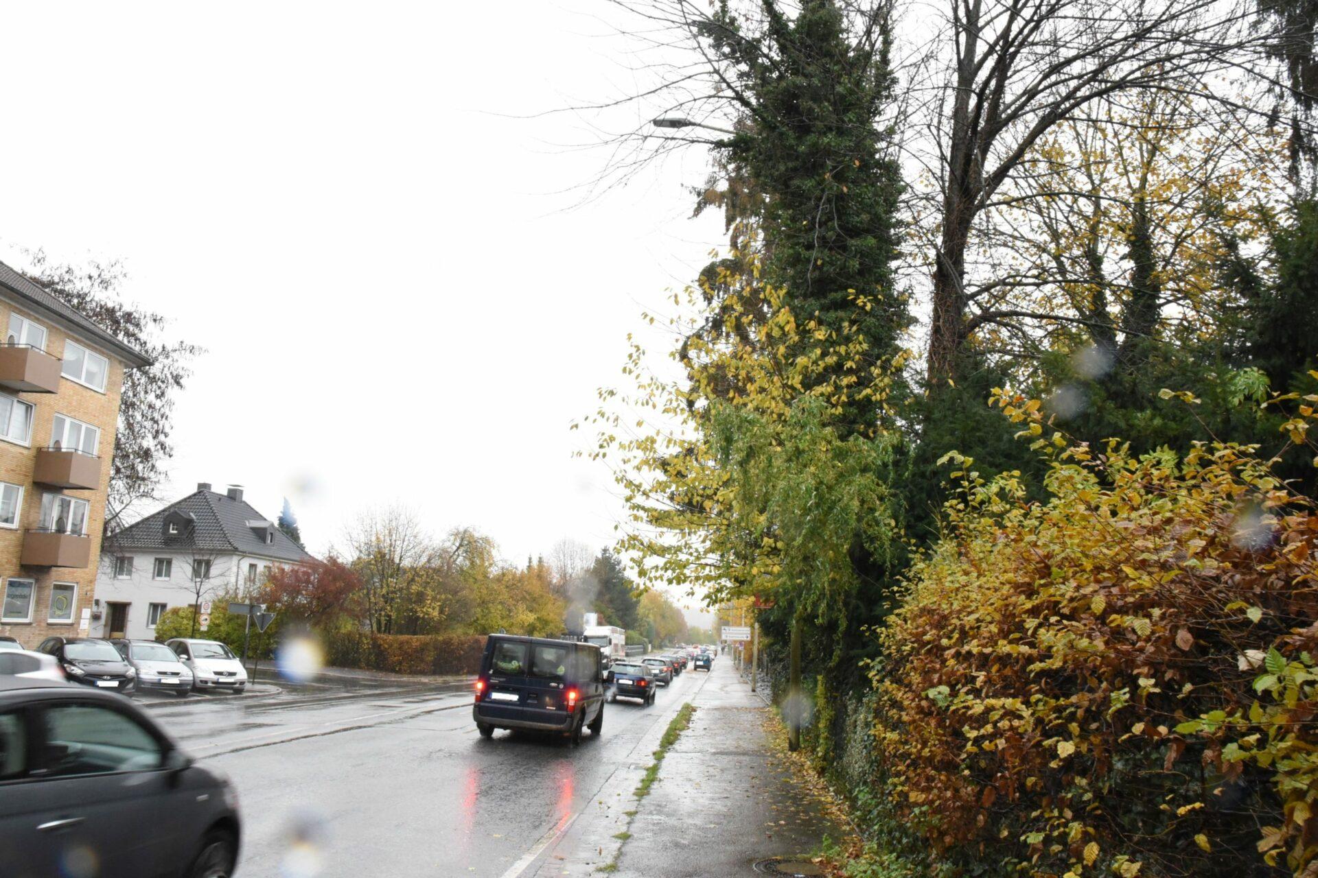 Fahrbahneinengung wegen Baumarbeiten