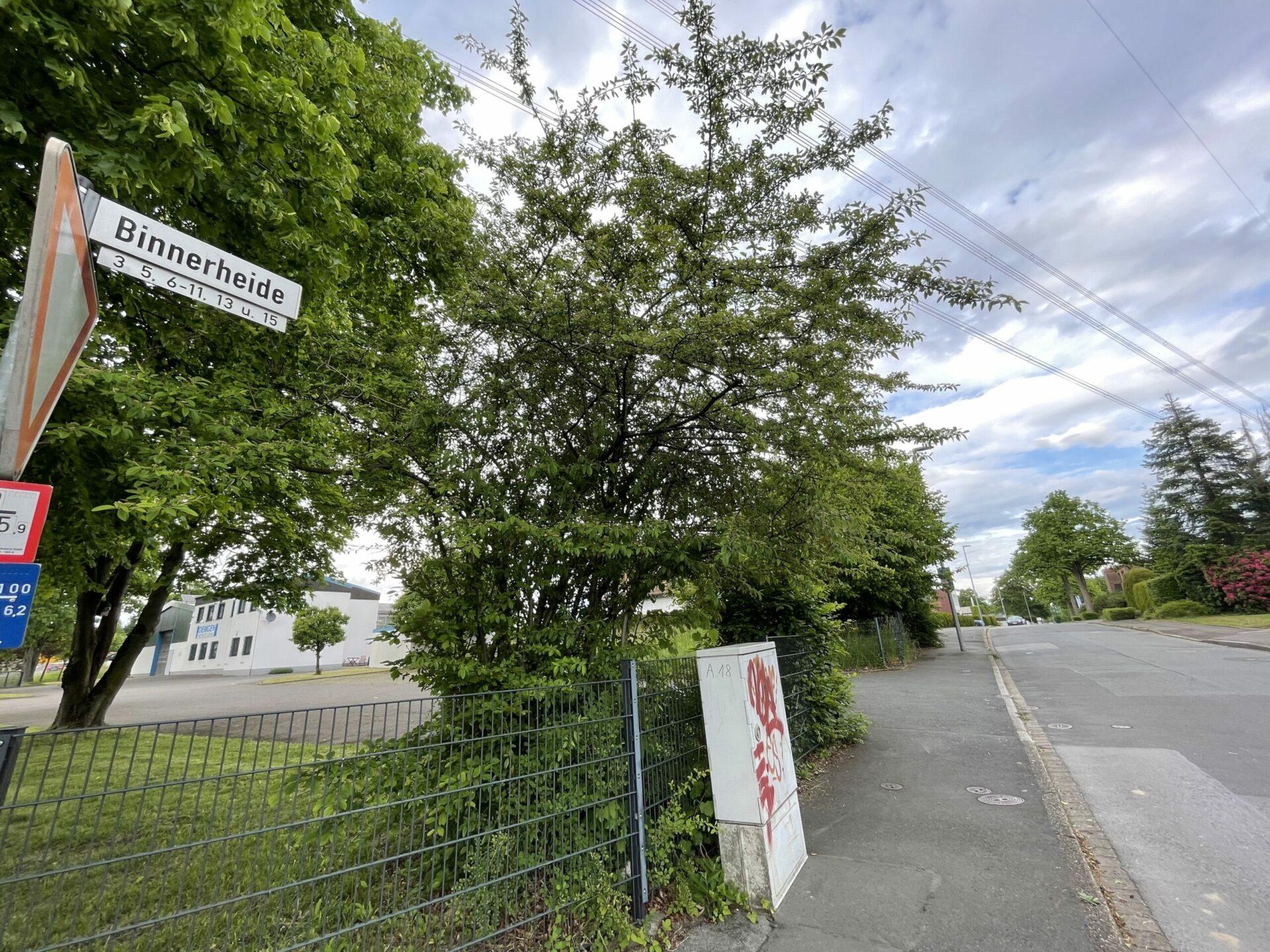 Binnerheide: Stadt Schwerte will Kaufverträge nicht offenlegen – und Preis nicht nennen