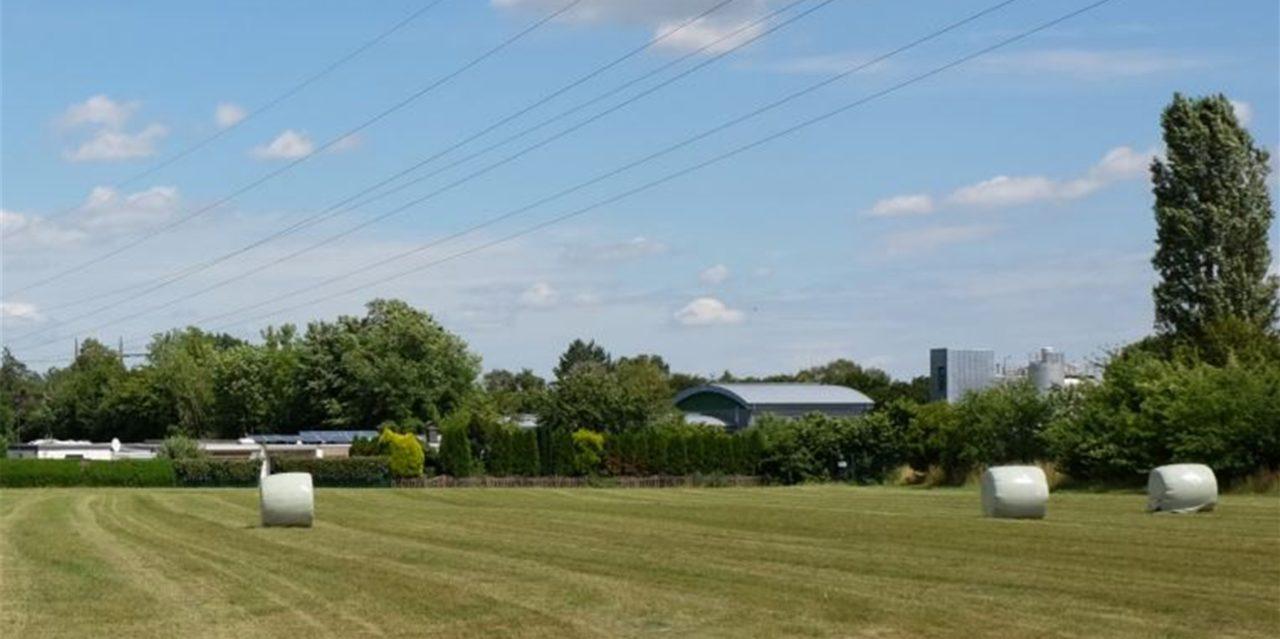 In Wandhofen soll ein großer Klimagarten für die IGA entstehen